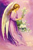 Resultado de imagem para ángeles lilas